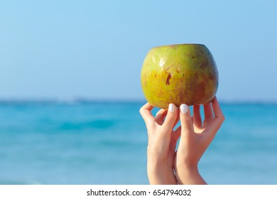 Female hands holding coconut on blue sea background