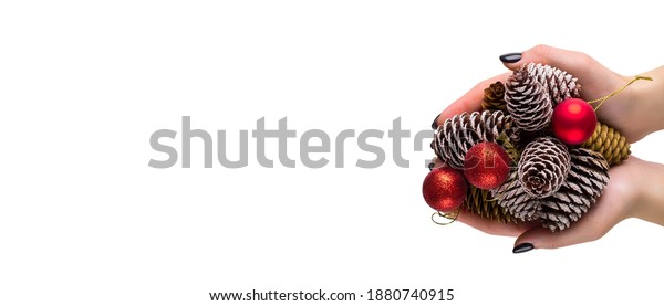 Female hands holding a many pine cones and red christmas balls. Woman holding pine cone, closeup. Christmas gift with balls and cones. Long wide banner