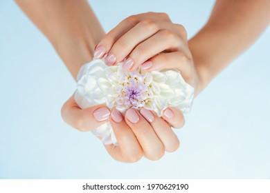 Female hands holding white flower
