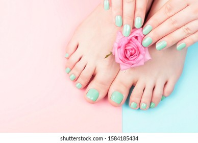 Female hands, legs with manicure and pedicure with flower on a pink, blue background