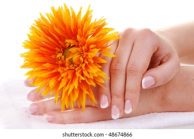 Female hands with nice french manicure and a flower on white towel
