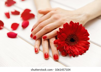 female hands with perfectly manicured red fingernails and flower petals