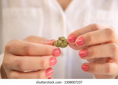 Female Hands With Pink Nail Polish Holding a Marijuana Bud. Cannabis Marketing.