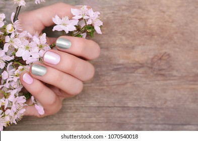 Female hands with pink and silver nail design holding blossom cherry branch.