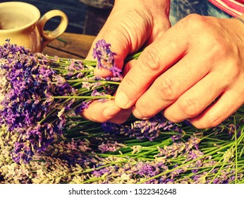 Female hands prepare stalk lavender for amazing smells  bunch of dry pink and purple kinds of levander.  Relaxing fragrance to the bedroom and home