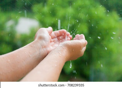 Female hands in the rain against the background of a green tree