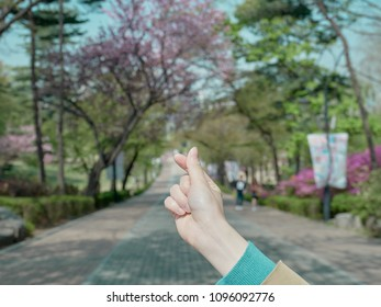 Female hands symbolizing a mini heart with fingers in the background of a park