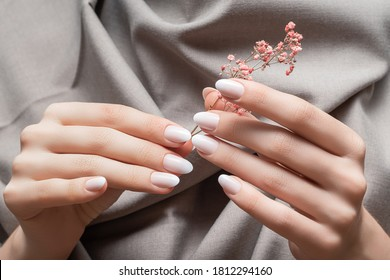 Female hands with white nail design. Female hands holding pink autumn flower. Woman hands on beige fabrick background.