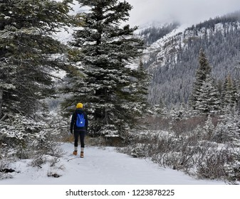 Female hiker with bright blue backpack and yellow toque hiking into forest in the Canadian Rockies