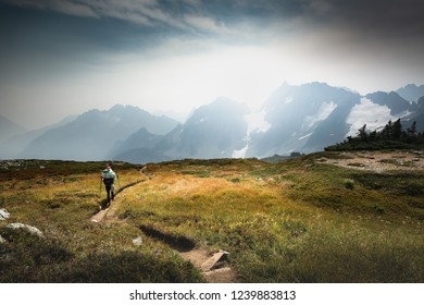 Female hiker is hiking on a meadown before reacing a pass in North Cascades National Park, Washington, USA. Northwest.