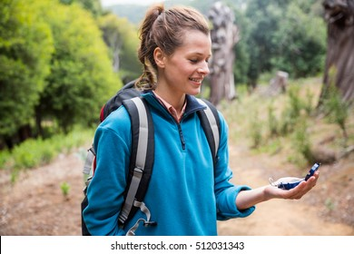 Female hiker looking at compass in forest