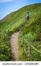 A female hiker pauses on the path at the Rebun Island Edelweiss Colony viewpoint to view the wildflowers and scenery in northern Japan