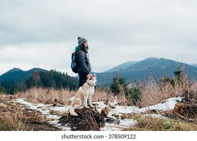 female hiker with siberian husky dogs in mountains looking at beautiful view