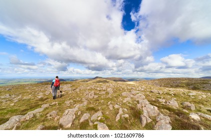A female hiker and their dog walking off the summit of Great Borne towards Loweswater Fell. The English Lake District, UK.