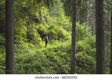 Female hiking by the mountains, awesome green forest