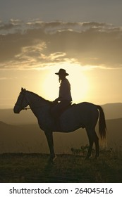 Female horseback rider and horse ride to overlook at Lewa Wildlife Conservancy in North Kenya, Africa at sunset