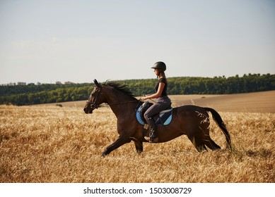 Female jockey in black protective helmet riding on her horse in the field.