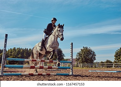 Female jockey on dapple gray horse jumping over hurdle in the open arena.