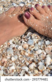Female legs with burgundy nails on the beach, in shells