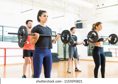 Female and male bodybuilders lifting weights while standing in gym