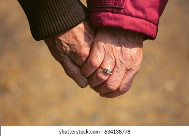 Female and male elderly hands holding each others hands. Senior couple in love walking hand in hand in the autumn forest. Autumn time and elderly people concept.