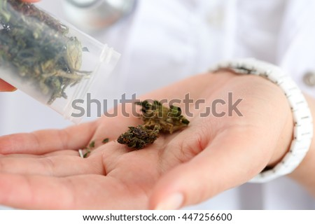 Female medicine doctor hand hold and offer to patient medical marijuana in jar. Cannabis recipe for personal use, legal light drugs prescribe, alternative remedy or medication, folk medicine concept