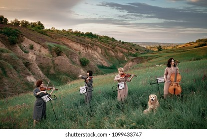 Female musical quartet with three violins and one cello plays on flowering meadow against backdrop of picturesque landscape next to sitting dog.