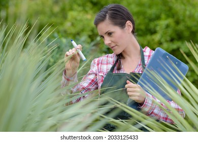 female nursery worker with clipboard inspecting plantlife