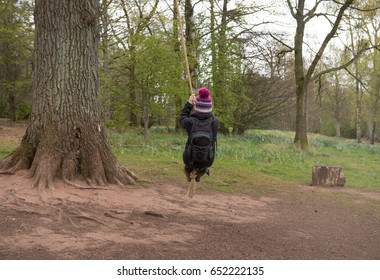 Cumbria swinging photo