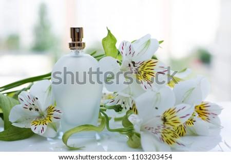 Female Perfume White Flowers Stock Photo Edit Now 1103203454