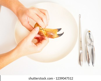 Female person holding crab claw over plate