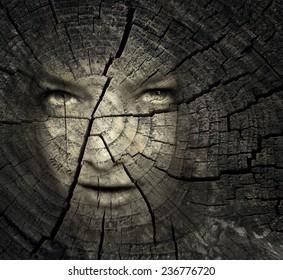 Female portrait in a trunk crack texture