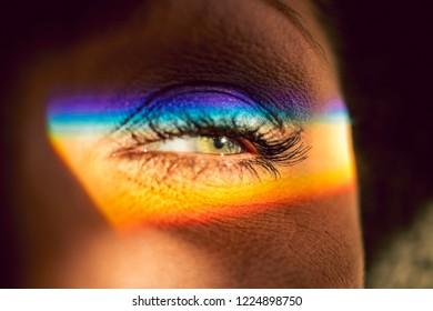 Female Rainbow Eye