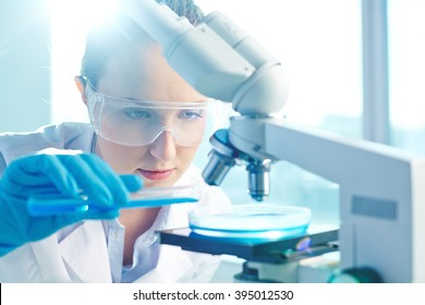 Female researcher using her microscope in a laboratory