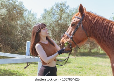 female rider cares for her horse