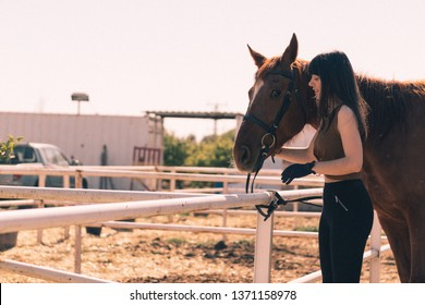 female rider takes care of her horse in stable