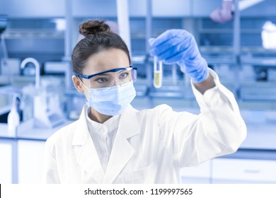 Female scientist looking at the scientific sample in the laboratory