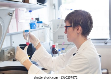 female scientist removing test tube from centrifuge in laboratory, woman in research scientific lab checking result of experiment