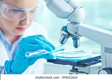 Female scientist working on experiments in the laboratory