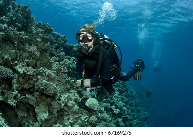 female scuba diver enjoys a great scuba dive in red sea