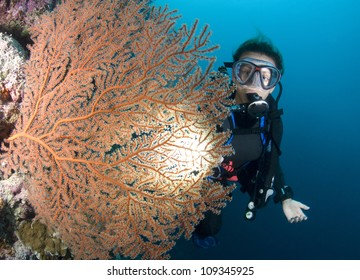 Female SCUBA Diver and Sea Fan