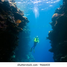 a female scuba diver swimming between underwater coral walls