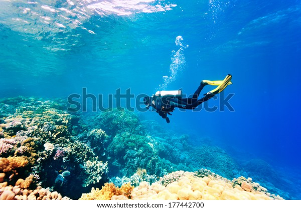 Female scuba diver swimming under water