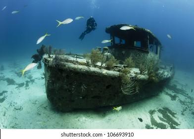 Female scuba diver swimming underwater near a shipwreck in the Bahamas