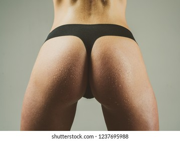 Female sexy ass in black bikini close up. Lingerie model on gray background. Closeur sexy butt. Big sexy ass of beautiful girl. Womans sexual lingerie. Slim woman dressed in black panties