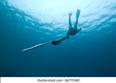 Female Spear-fisher swims down to viewer, points spear gun at camera