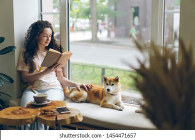 Female student is reading book and stroking pet dog sitting on window sill in cafe enjoying hobby and leisure time. Literature, animals and youth lifestyle concept.