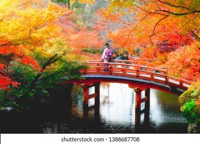 Female traveler standing at wooden bridge in the autumn park, Japan