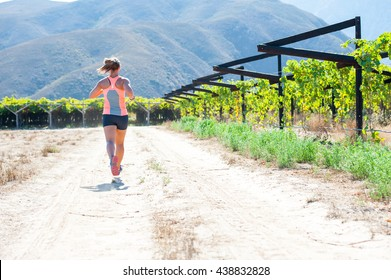 Female triathlete running on a trail on a bright sunny day winelands and vineyards of the Western Cape of South Africa