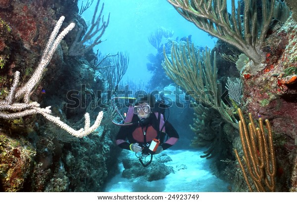 Female underwater photographer glides along through one of the distinctive spur and groove systems of coral in Roatan, Bay Islands, Honduras